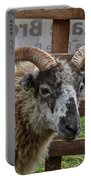 Sheep One Portable Battery Charger