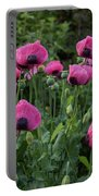 Shell Shaped Poppies Portable Battery Charger