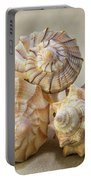 Shell Still Life Portable Battery Charger