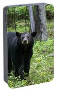 Shenandoah Black Bear Portable Battery Charger
