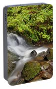 Shepperd's Dell Falls Portable Battery Charger