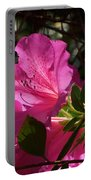 Shining Azalea Portable Battery Charger
