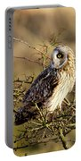 Short-eared Owl In Tree Portable Battery Charger