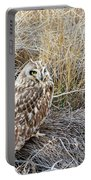 Short Eared Owl Portable Battery Charger by Michael Chatt