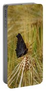 Showing The Dark Side. European Peacock On Barley Portable Battery Charger