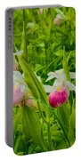 Showy Lady's Slipper Orchids Portable Battery Charger