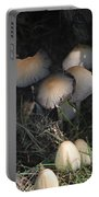 Shrooms 1 Portable Battery Charger