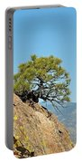 Shrub And Rock At Canon City Portable Battery Charger