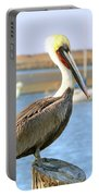 Shy Brown Pelican Portable Battery Charger