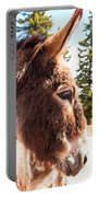 Shy Burro In Cripple Creek Portable Battery Charger