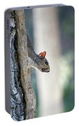 Shy Squirrel Portable Battery Charger