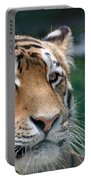 Siberian Tiger 2 Portable Battery Charger