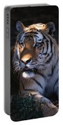 Siberian Tiger Executive Portrait Portable Battery Charger