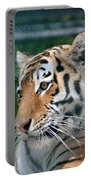 Siberian Tiger Portable Battery Charger