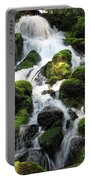 Side Of Clearwater Falls Portable Battery Charger