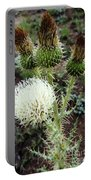 Side Thistle  Portable Battery Charger