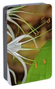 Side View Of Cahaba Lily In Huntington Botanical Gardens In San Marino-california  Portable Battery Charger