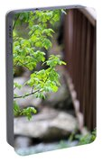 Signs Of Spring In American Fork Canyon Utah Portable Battery Charger