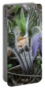 Signs Of Spring Portable Battery Charger