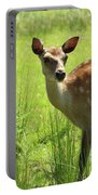 Sika Deer Omagh Portable Battery Charger