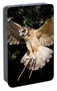 Silent Flight Portable Battery Charger