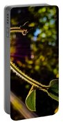Silhouette Of Climbing Vine On A Sunny Afternoon Portable Battery Charger