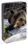 Silly Bear  Portable Battery Charger