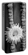 Silver Desert Jewel Portable Battery Charger
