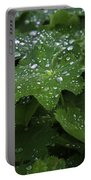 Silver Droplets Portable Battery Charger