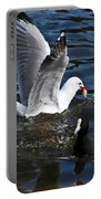 Silver Gull And Australian Coot Portable Battery Charger