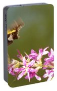 Silver Spotted Skipper Landing On Blooms                 August               Indiana Portable Battery Charger