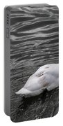 Silver Swan Portable Battery Charger