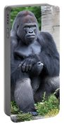 Silverback Gorilla Portable Battery Charger
