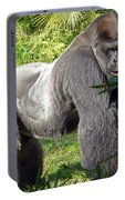 Silverback Portable Battery Charger