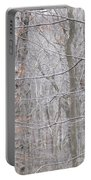 Silviculture Portable Battery Charger