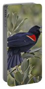 Sing Me A Song, Red-winged Blackbird Portable Battery Charger