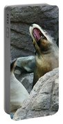 Singing Sea Lions Portable Battery Charger