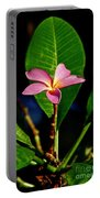 Single Blossom Portable Battery Charger