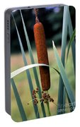 Single Cattail Portable Battery Charger