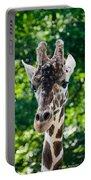 Single Giraffe Portable Battery Charger