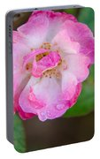 Single Rose 2 Portable Battery Charger