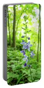 Single Stem Portable Battery Charger