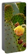 Single Yellow Cactus Bloom 050715a Portable Battery Charger