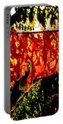 Sizzling Sumac Portable Battery Charger