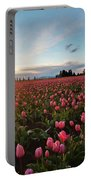 Skagit Sunset Field Portable Battery Charger