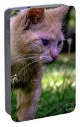 Skippy Feral Cat Portrait 0369b Portable Battery Charger