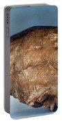 Skull Of Peking Man Portable Battery Charger