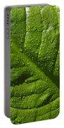 Skunk Cabbage Leaf Portable Battery Charger