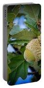 Sky Lit Oak Acorns Portable Battery Charger