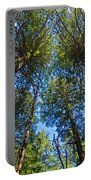 Skyward Portable Battery Charger by Gary Lengyel